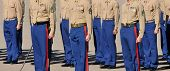image of united states marine corps  - Marines standing at attention during a graduation ceremony - JPG