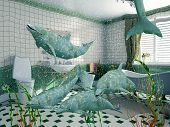 pic of cetacea  - the dolphins in bathroom interior  - JPG