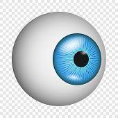 Eye Anatomy Icon. Realistic Illustration Of Eye Anatomy Icon For On Transparent Background poster