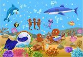 Постер, плакат: Подводная жизнь