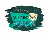 Summer Sale 35 Off Only Today Promotional Emblem. Summertime Discount Logo With Tropical Plants Leav poster