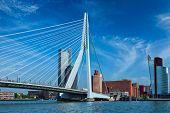 Panorama of Rotterdam cityscape with and Erasmus bridge. Netherlands poster