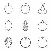 Orchard Fruits Icons Set. Outline Illustration Of 9 Orchard Fruits Icons For Web poster