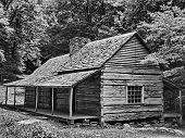 picture of log cabin  - Black  - JPG