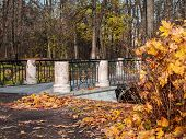 Fallen Yellow Leaves Are Gathered In A Heap And Scattered Near The Bridge With Marble Racks And Cast poster