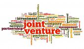 Joint venture concept in tag cloud on white background
