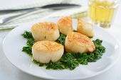 image of scallops  - Roasted scallops with spinach on a plate - JPG
