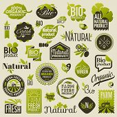 Natural Organic Product Labels, Emblems And Badges. Set Of Vector Design Elements