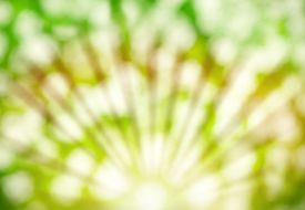 stock photo of yellow  - Abstract summer green and yellow background with bokeh and sunlight - JPG