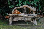 image of bench  - wooden bench object - JPG