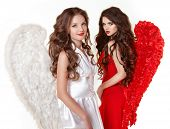 pic of pinup girl  - Attractive fashion beautiful angel girls with angel - JPG
