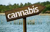 foto of mary jane  - Cannabis wooden sign and the beach as the background - JPG
