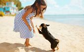 stock photo of children beach  - Child and dog playing on the beach in summer day - JPG