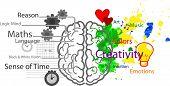 pic of hemisphere  - Illustration of brain functions - JPG