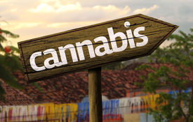 picture of mary jane  - Cannabis wooden sign with an alternative background  - JPG