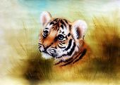 picture of cute tiger  - Illustration cute baby tiger cartoon looking out from a green grass surroundings - JPG