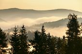 foto of smoky mountain  - Foggy mountains landscape in the morning sun - JPG