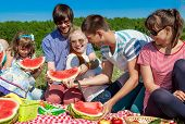 image of watermelon  - Outdoor Group Portrait Of Happy Company Having Picnic On Green Grass In Park And Enjoying Watermelon - JPG