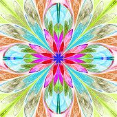 picture of fractals  - Multicolored symmetrical fractal flower in stained - JPG