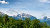 pic of snow capped mountains  - Close up of fir tree tops with rocky snow - JPG