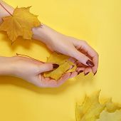 Fashion Art Hand Woman In Autumn Time And Leaves On Her Hand With Bright Contrasting Makeup. Creativ poster