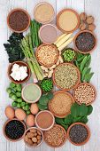 Health food high in protein with tofu, fresh vegetables, legumes, grains, dairy, supplement powders, poster