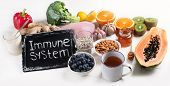 Health  Food To Boost Immune System poster