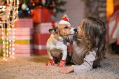 Merry Christmas. Little girl child at home at the fireplace with a dog Jack Russell Terrier  in red  poster