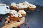 Cranberry Muffins On A Wood Cutting Board With More Cooling On A Bakers Rack. Extreme Shallow Depth  poster