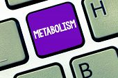 Conceptual Hand Writing Showing Metabolism. Business Photo Text Chemical Processes In Body To Produc poster
