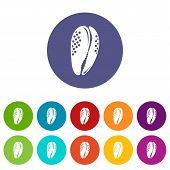 Aquatic Shell Icon. Simple Illustration Of Aquatic Shell Icon For Web poster