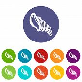 Spiral Shell Icon. Simple Illustration Of Spiral Shell Icon For Web poster