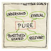 PURE (positively stated, understood, relevant, ethical) goal setting concept - a napkin doodle isola