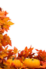 foto of fall leaves  - Fall leaves with pumpkin on white background fall harvest - JPG