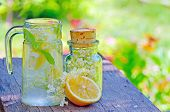 stock photo of elderflower  - Elderflower and lemon juice shoot in garden - JPG