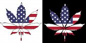 stock photo of ganja  - Marijuana American Flag  - JPG