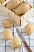 stock photo of solanum tuberosum  - Organic Potatoes fresh from the farmers market - JPG