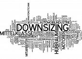 Word cloud - downsizing