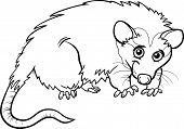 image of opossum  - Black and White Cartoon Illustration of Cute Opossum Animal for Coloring Book - JPG