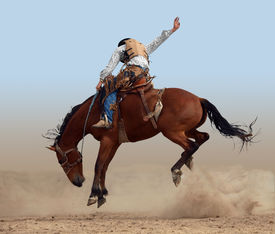 stock photo of bucking bronco  - Bucking Rodeo Horse isolated with clipping path - JPG