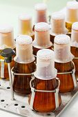 stock photo of thermos  - Close up amber color flasks on thermo scientific orbital shaker in laboratory - JPG