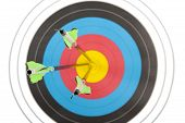 stock photo of archery  - The bull - JPG