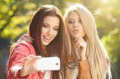 picture of selfie  - Friends making selfie - JPG