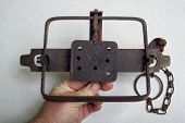 foto of trap  - A antique beaver leghold trap used in the fur trade - JPG