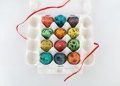 stock photo of quail egg  - Easter eggs - JPG