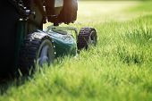 pic of color wheel  - Mowing or cutting the long grass with a green lawn mower in the summer sun - JPG