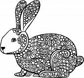 pic of hare  - Decorative hand drawn doodle rabbit illustration - JPG