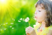 Happy Child Blowing Dandelion Flower Outdoors poster