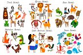 Big Collection Of Cute Cartoon Animals From Different Continents: Forest,australian, African ,south poster