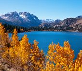 picture of mammoth  - Picturesque rural landscapes on Mammoth lake - JPG